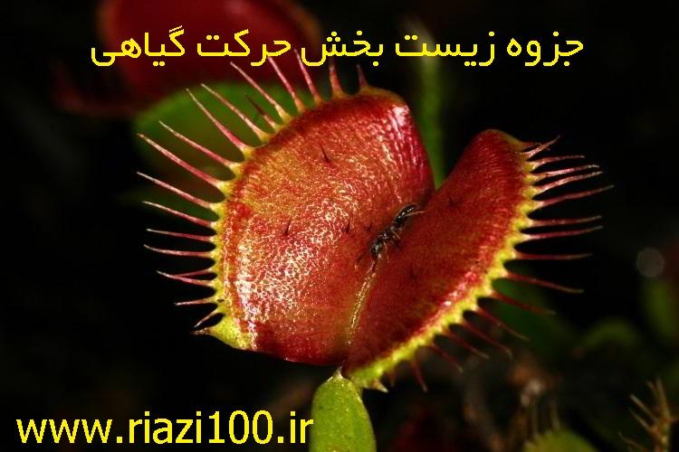 جزوه زیست بخش حرکت گیاهی
